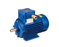 Cemp Italy Explosion Proof Electromotor