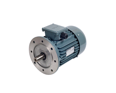 Turkey Three Phase Gamak Electromotor With Flange