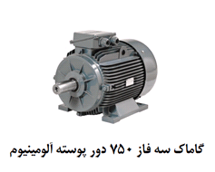 Gamak Electromotor 0.75 W Three Phases 75 Rounds